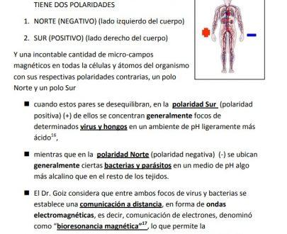 Manula biomagnetismo 1
